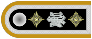 Shoulder bar for the rank of SS-Hauptscharführer, with white metal 'LAH' cypher