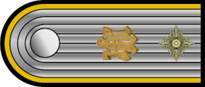 Shoulder bar for the rank of SS-Obersturmführer, with silver gilt metal 'LAH' cypher